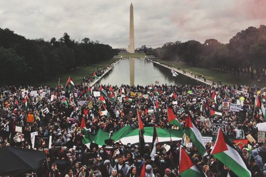 Palestine-march-DC-1-1024x683
